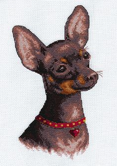 Cheeky Chihuahua Dog Cross Stitch Kit | sewandso