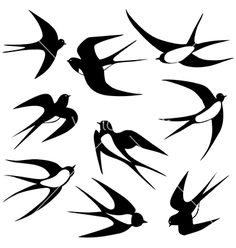 Swallow clip art images and royalty free illustrations available to search from thousands of EPS vector clipart and stock art producers. Vogel Silhouette, Bird Silhouette Tattoos, Golondrinas Tattoo, Silhouettes, Vogel Tattoo, Sparrow Tattoo, Motifs Animal, Bird Crafts, Bird Drawings