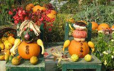 tök virágcsokor és dekoráció ősz