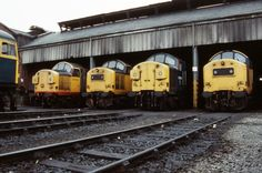 Class 37s Nos L to R No.37118 No.37191 No.37113 No.37188 in line at Grangemouth Depot with the nose of Class 26 No. 26039 on the eve of 25th June 1988. (Ian Williams)