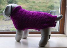 Hand Knitted Purple Dog Jumper Dog Sweater by IrishSmallKnits, Dog Jumpers, Dog Sweaters, Acrylic Wool, Alpaca Wool, Fingerless Gloves, Arm Warmers, Hand Knitting, Your Dog, Stitch