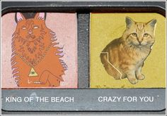 king of the beach vs. crazy for you