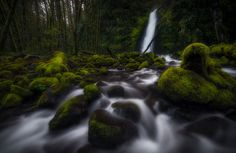 A little waterfall off Ruckel Creek. This spot doesn't get much attention since one of the most popular falls in the area is upstream and most bypass this spot. Still, this is one of my favorite waterfalls in the Gorge.