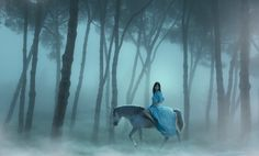 The Lady and the Unicorn by Manuel Barca, via 500px