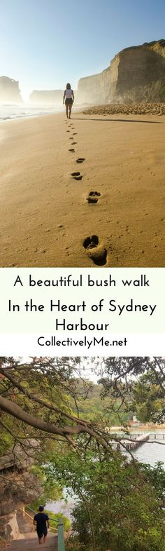Do you live in Sydney Australia? Or plan to visits? Then you need to see this! A Beautiful walk for all fitness levels, that will let you see all that this beautiful city and harbor has to offer with stunning views and photograph opportunities the entire way! See what you can discover by visiting me @ http://Collectivelyme.net to find out more.