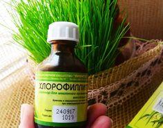 «Хлорофиллипт»: цена вопроса — копейки! 15 проверенных временем рецептов   Golbis