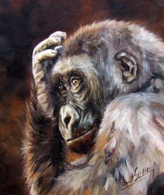 GORILLA Superb New DAVID STRIBBLING Oil Painting in Paintings | eBay