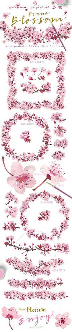 Prune Blossom - Wedding Clipart set  by watercolorwild.graphics on @creativemarket
