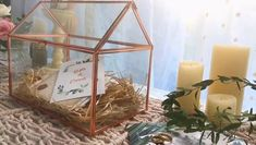 pure copper glass wedding card box idea Glass Wedding Card Box, Wedding Cards, Diy Wedding, Wedding Ideas, Terrarium Containers, Glass Terrarium, Terrarium Ideas, Terrariums, Copper Glass