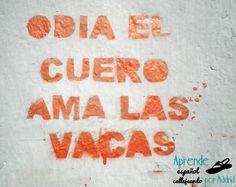"Pintada en Malasaña contra el ""especismo"" (http://palabraspormadrid.blogspot.com.es/…/especismo-desped…)"