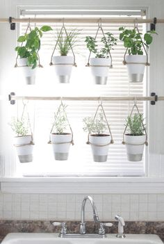 Hängande krukor med örter i köksfönster Indoor Vegetable Gardening, Herb Garden Indoor, Container Herb Garden, Organic Gardening, Gardening Hacks, Bathroom Window Decor, Kitchen Window Treatments With Blinds, Bathroom Window Coverings, Kitchen Window Curtains