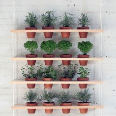 DIY Hanging Garden Shelves.