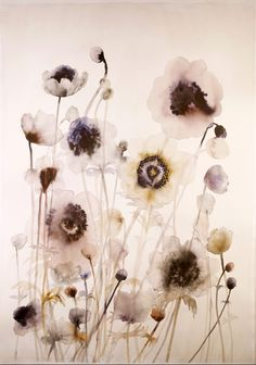 Anemone field watercolor and ink on paper 29.5¨x 43¨, Lourdes Sanchez