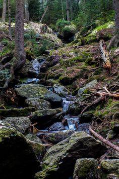 wanderthewood: Šumava National Park Czech Republic by. Scenic Photography, Nature Photography, Photography Tips, Beautiful Places, Beautiful Pictures, Beautiful Scenery, Bavarian Forest, Forest Waterfall, City Landscape