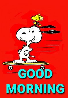 Good Morning Snoopy, Good Morning Friends Quotes, Morning Greetings Quotes, Good Morning Gif, Snoopy Images, Snoopy Pictures, Charlie Brown Y Snoopy, Snoopy Cartoon, 1980s Childhood