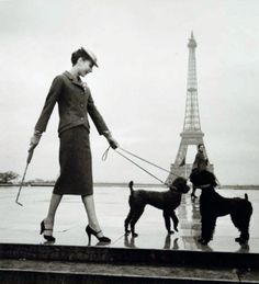 As much a part of the fashion story as the classic Dior suit or Balenciaga gown, the dogs in these images were as important as the pearls or the handbag. Come Visit Strands of Pearls  Dior by Louise Dahl Wolfe 1940  via