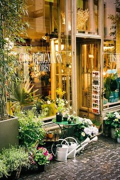 Florist in Zurich, Switzerland Why do I like all the european garden stores?