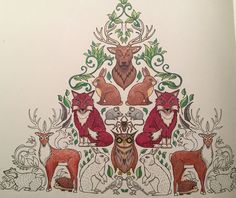 Enchanted Forest Coloring BooksColouringJohanna