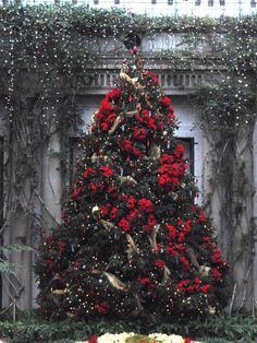Grand Holiday  ChristmasTree,#holiday #decorations  ♥༻♥ nyRockPhotoGirl ♥༻♥