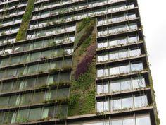 Sydney. Il giardino è in verticale. Per 16 piani   Repubblica Viaggi