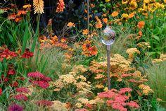 Achilea,  Helenium,  Kniphofia,  Dahlia,  ornamental grass, gardening, garden design, landscaping, landscape design, flowers,