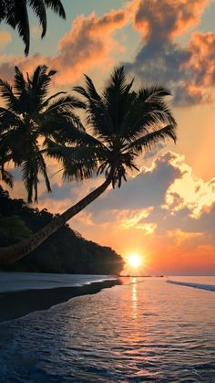 Exotic Sunset by the Sea