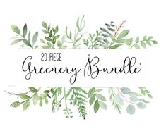 Big Watercolor Greenery Bundle by DailyMiracleDigitals,LLC on @creativemarket