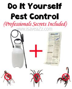 Do It Yourself Pest Control!  Perfect for scorpions, spiders and more!