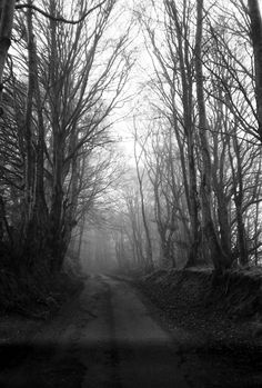 35mm Balck and White film image Copyright Penelope Davies