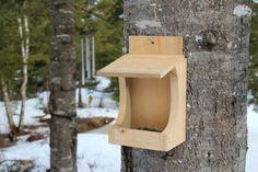 wooden bird feeder for the dinky birds