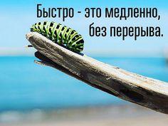 Анна Штаер – Курс Армена Петросяна «Стодневка – экспедиция к новому Я»