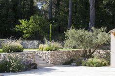Aix-en-Provence, Creación de un jardín privado, arquitecto paisajista, diseñador rural . Garden Stairs, Terrace Garden, Landscape Architecture, Landscape Design, Aix En Provence, Swimming Pool Designs, Pool Landscaping, Garden Planning, Garden Inspiration