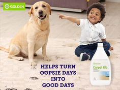 NeoLife Carpet Glo - Concentrated and economical, cleans and rejuvinates all colour-fast carpets and upholstery. Buy at our trusted South Africa Store. Good Day, Good To Know, All The Colors, Africa, Cleaning, Carpets, Upholstery, Colour, Website