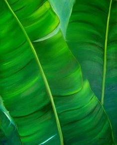 cuadros de hojas al oleo - Buscar con Google