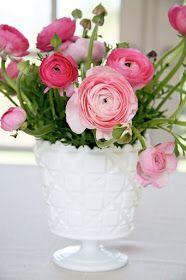 pretty pink ranunculus arrangement in white milk glass vase Fresh Flowers, Pink Flowers, Beautiful Flowers, Ranunculus Flowers, Pink Hydrangea, Bright Flowers, Exotic Flowers, Pink Peonies, Yellow Roses
