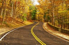 Plan to fully enjoy the beauty of a New England fall this year. Here are the best scenic drives in Rhode Island to take in those gorgeous colors.