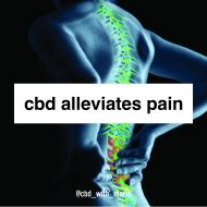What is CBD? CBD is short for Cannabidiol, one of the many cannabinoids present in the Cannabis plant. Unlike THC, CBD has no known psychoactive properties, and will not get you 'high'. What CBD do… Other Info Explore our site. Essential Oils For Eczema, Wear You Out, Find Someone Who, Feeling Overwhelmed, Cannabis Plant, Feels, Chips, Stress