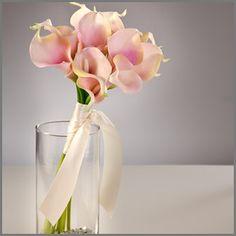 Vintage Pink Callas