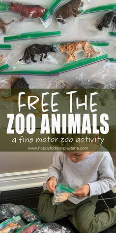 Zoo Animal Activities, Zoo Animal Crafts, Zoo Crafts, Farm Activities, Motor Skills Activities, Toddler Learning Activities, Infant Activities, Outdoor Toddler Activities, Toddler Games