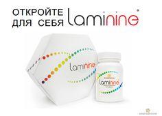 Презентация Ламинина, рассказ о ламинине,презентация проекта Laminine LPGN, все о ламинине, мотивация Ламинина