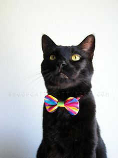 My Cat Of Many Colors by For Mew on Etsy