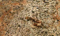 White Cliffs Opal Mines / via Robinson Meyer