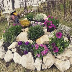 Stunning Front Yard Rock Garden Landscaping Ideas - Designing a front yard is usually about accessibility and invitation. We spend hardly any time in the front yard as opposed to the backyard, but it is. Rockery Garden, Rock Garden Plants, Pebble Garden, Patio Plants, Flowers Garden, Spring Flowers, Landscaping With Rocks, Front Yard Landscaping, Outdoor Landscaping