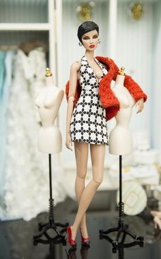 Coat and dress for fashion royalty , Poppy Parker, nuface ,Silkstone Barbie, fr2 , 12 Fashion Doll you receive red coat , dress Doll and other accessories are NOT INCLUDED - Thank you for watching. Rimdoll