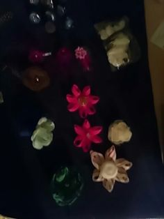 Flower hair clips and Bobby pins