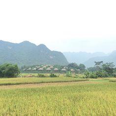 Mai Chau #hoabinh #vietnam #reisen #wandern