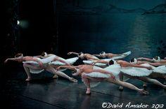 El lago de los cisnes del Ballet de Moscú en el Teatro Circo de Marte- La Palma