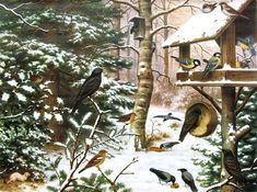 TOUCH this image: Vogels in de winter in de tuin by meester Henk