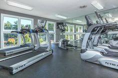Fitness Facilities, Treadmill, Gym Equipment, Sports, Hs Sports, Treadmills, Workout Equipment, Sport