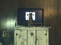 barnyard tv stand